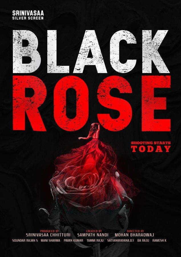 <p>Black Rose</p>-banner