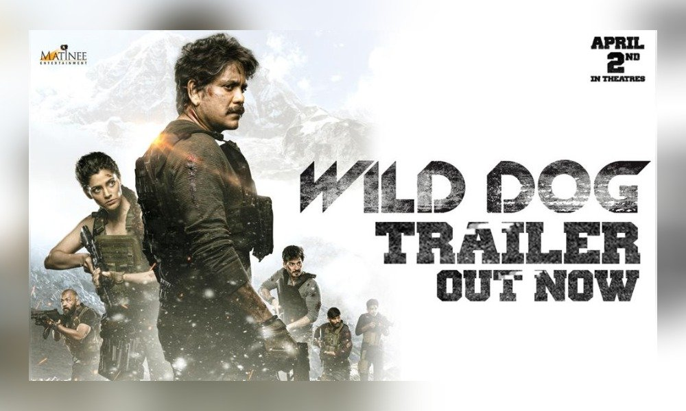 wild-dog-promises-an-action-packed-thriller-image
