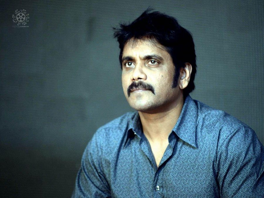 nagarjuna-teams-up-with-praveen-sattaru-for-his-next-flick-image
