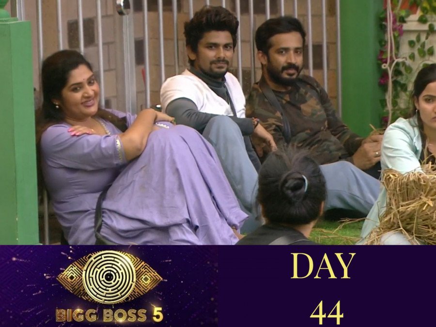 bigg-boss-5-the-golden-chicken-task-flares-rivalry-between-sunny-and-priya-image